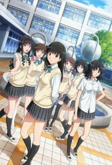 Постер Амагами СС [ТВ-2] 2012