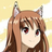steam_raccoon